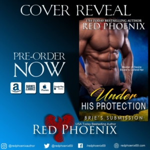 Cover reveal protection 2