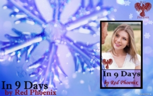 holiday-in-9-days-banner