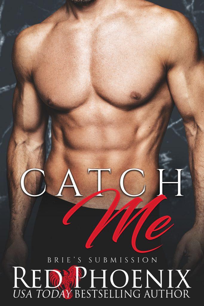 Catch Me Book 3